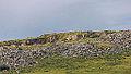 Bodmin Moor, Cornwall-9105.jpg