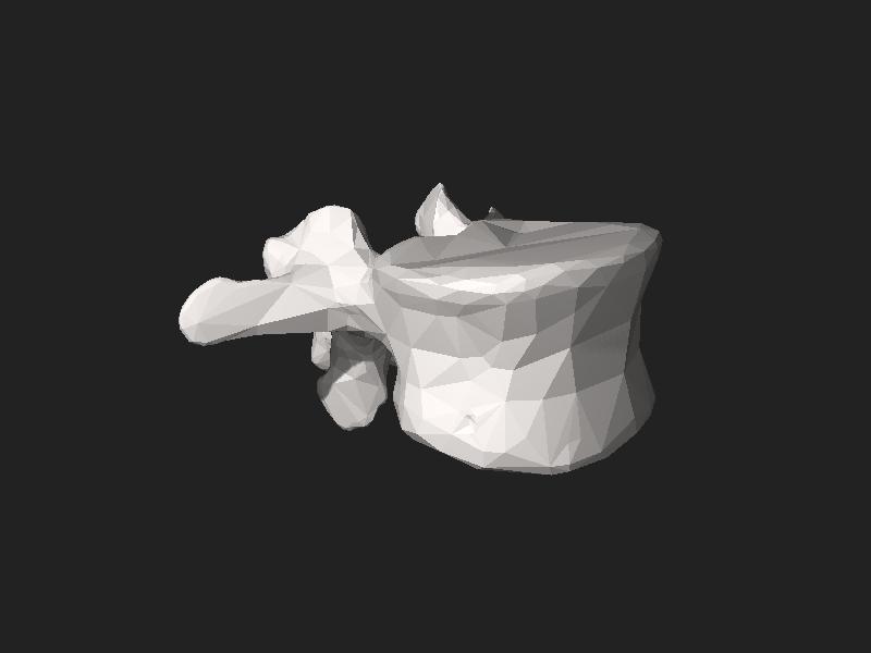 File:BodyParts3D FJ3159 Second lumbar vertebra.stl