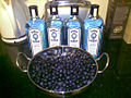 Bombay sapphire and sloes.jpg
