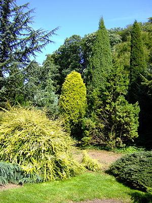 Image of Arboretum Park Härle: http://dbpedia.org/resource/Arboretum_Park_Härle