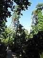 Botanischer Garten14.jpg