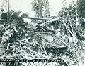 Bougainville USMC Photo No. 1-10 (20978751153).jpg