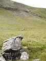 Boulder Threlkeld Knotts - geograph.org.uk - 55867.jpg