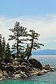 Boulders and Pines, Lake Tahoe, Nevada (4721535436).jpg