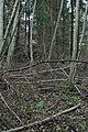 Brattfors IMG 4220.JPG