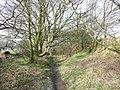 Bridleway, High Hoyland - geograph.org.uk - 730209.jpg