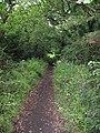 Bridleway near Willaston - geograph.org.uk - 1383371.jpg
