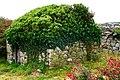 Brinlack - Derelict building - geograph.org.uk - 1181383.jpg