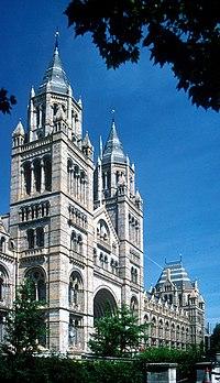 Museo de historia natural de Londres. La fachada decorada en terracota tiene el estilo típico de la arquitectura victoriana. Las esculturas en la fachada representan animales y plantas modernos y extintos.