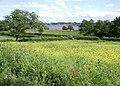 Brockholme, Hornsea - geograph.org.uk - 856140.jpg