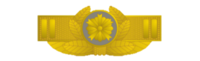 Brooch rank insigna for chief superintendent of japanese police.png