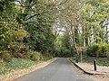 Brownsover Lane - geograph.org.uk - 2661232.jpg