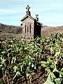 Brufe (Vila Nova de Famalic o) (375936693).jpg
