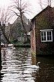 Bruges2014-133.jpg
