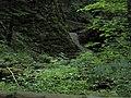 Bubovice-Srbsko - panoramio (122).jpg