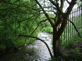 Buckley, Greater Manchester - Buckley Brook is a watercourse in Buckley, and a tributary of the Hey Brook, which in turn is a tributary of the River Roch.