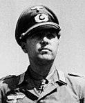 Bundesarchiv Bild 101I-732-0132-43A, Hasso von Manteuffel mit Oberst Niemack (cropped).jpg