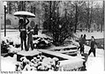 Bundesarchiv Bild 183-1987-0316-017, Schwerin, Winter.jpg
