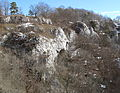 Burgstall Stein 16, Donautal.JPG