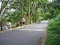 Burke Gilman Trail (10487983085).jpg