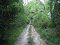 Byway near Buckholt Farm - geograph.org.uk - 479130.jpg