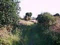 Byway near Great Yews - geograph.org.uk - 519676.jpg