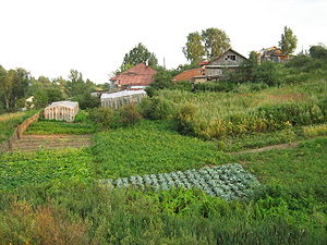 Old houses with vegetable gardens in the villa...