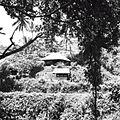 COLLECTIE TROPENMUSEUM Voormalig huis van Walter Spies in Campuhan Ubud TMnr 60030329.jpg