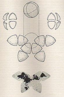 Cahill's 1909 butterfly map