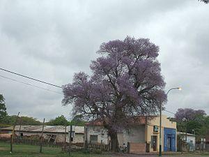 Presidente Hayes Department - A street of Benjamín Aceval