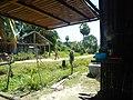 Cambodia 2014 - panoramio (7).jpg