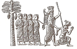 Cambise Ii Di Persia Wikipedia