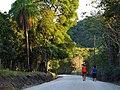 Camino a Matambú. - panoramio.jpg