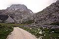 Camino de Sotres a Áliva - panoramio (11).jpg