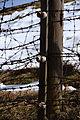 Camp de concentration de Natzwiller-Struthof 04.jpg