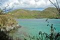 Caneel Bay Hawksnest Bay Snorkeling 3.jpg