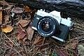 Canon FTb leaves.jpg