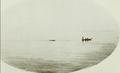Captain I. Anderson, killing a whale, Point Esperance.png