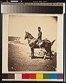 Captain Walker, 30th Regiment LCCN2001697252.jpg
