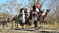 Caravane des nomades7.jpg