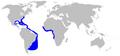 Night shark geographic range