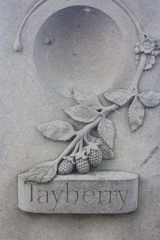 Tayberry - Carving of a Tayberry, on the banks of the River Tay in Perth