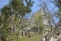 Castelo de Arnoia (30).jpg