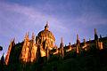 Catedral nueva de Salamanca..jpg