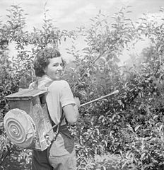 Cecil Beaton Photographs- Women's Horticultural College, Waterperry House, Oxfordshire, 1943 DB266.jpg