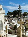 Cementerio de Melilla (6) (8233462588).jpg