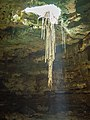 Cenote in valladolid mexico (21200950208).jpg