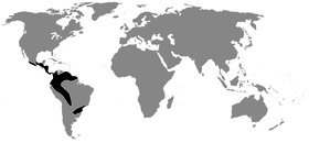 Distribution of Centrolenidae (in black)