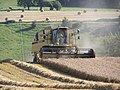 Cereal Harvest in Somerset - geograph.org.uk - 1484575.jpg