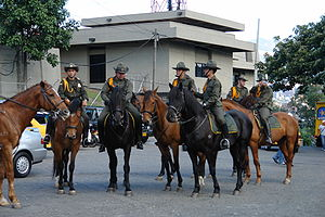 National Police of Colombia - Mounted Carabineros in Medellín.